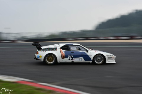 AVD BMW M1 Procar n°25 of Marco Wagner