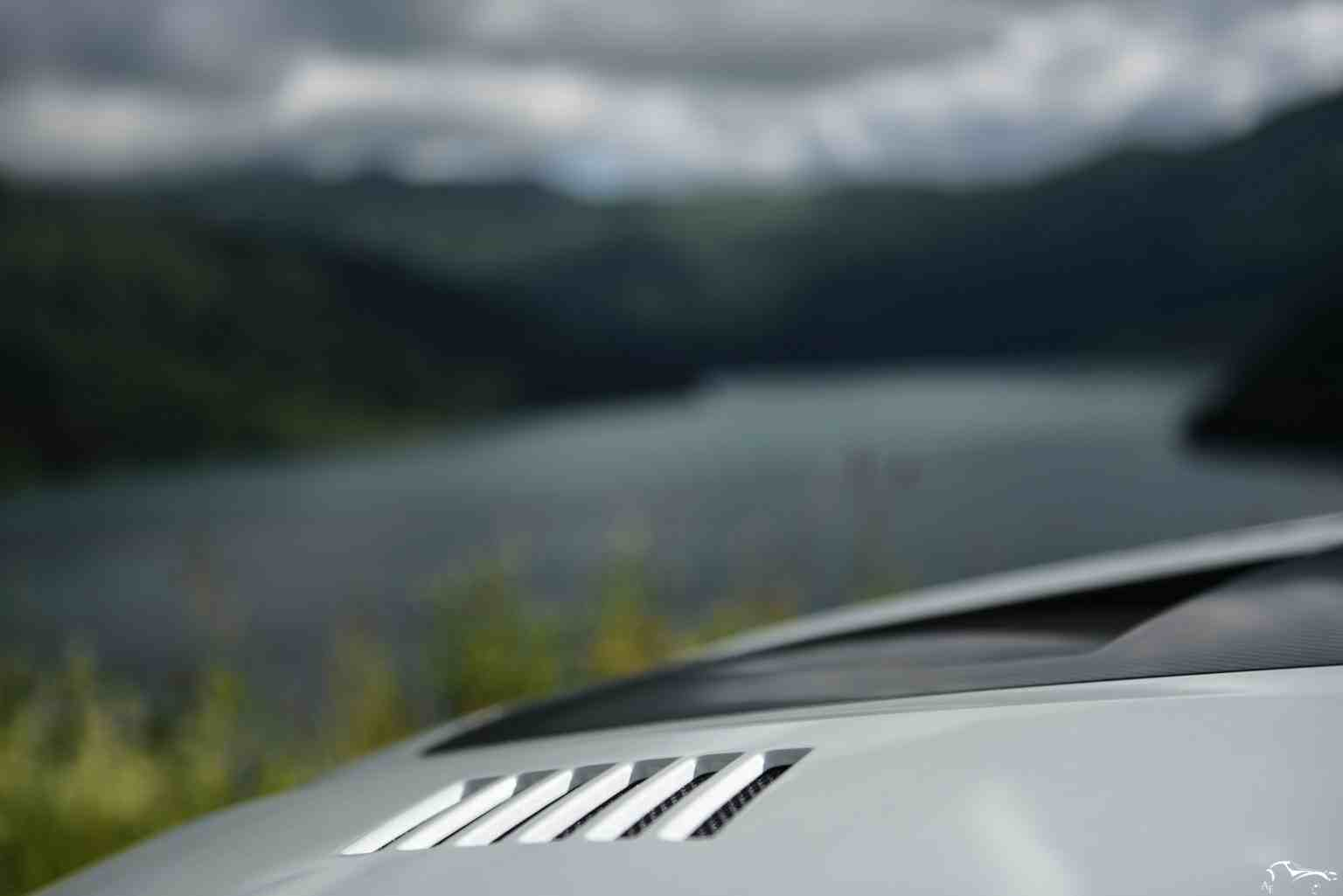 Renault Megane RS Trophy R Carbon fiber hood